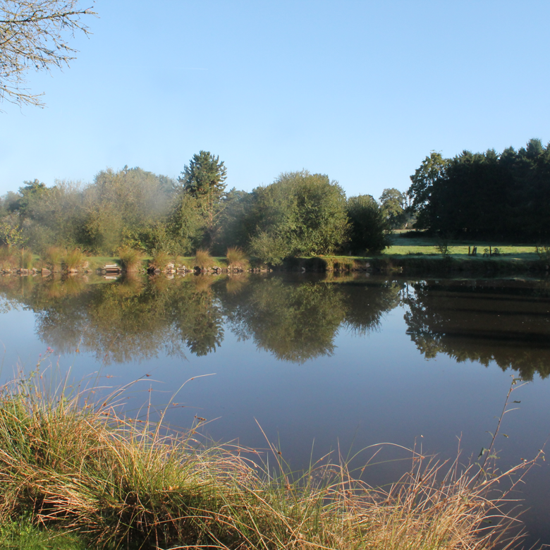 Carp fishing in france the orchard carp fishing in france for Fishing in france