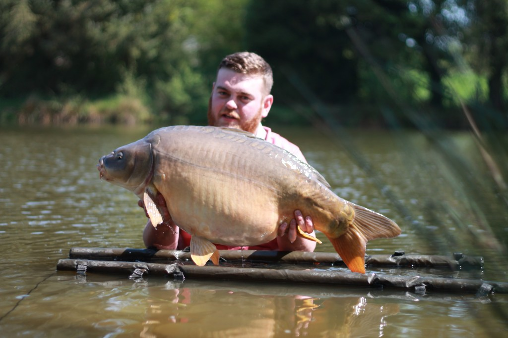 The Orchard 43lb